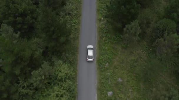aerial view of a gray car driving on a road in a green forest, shot from a flying drone over the car, view from above