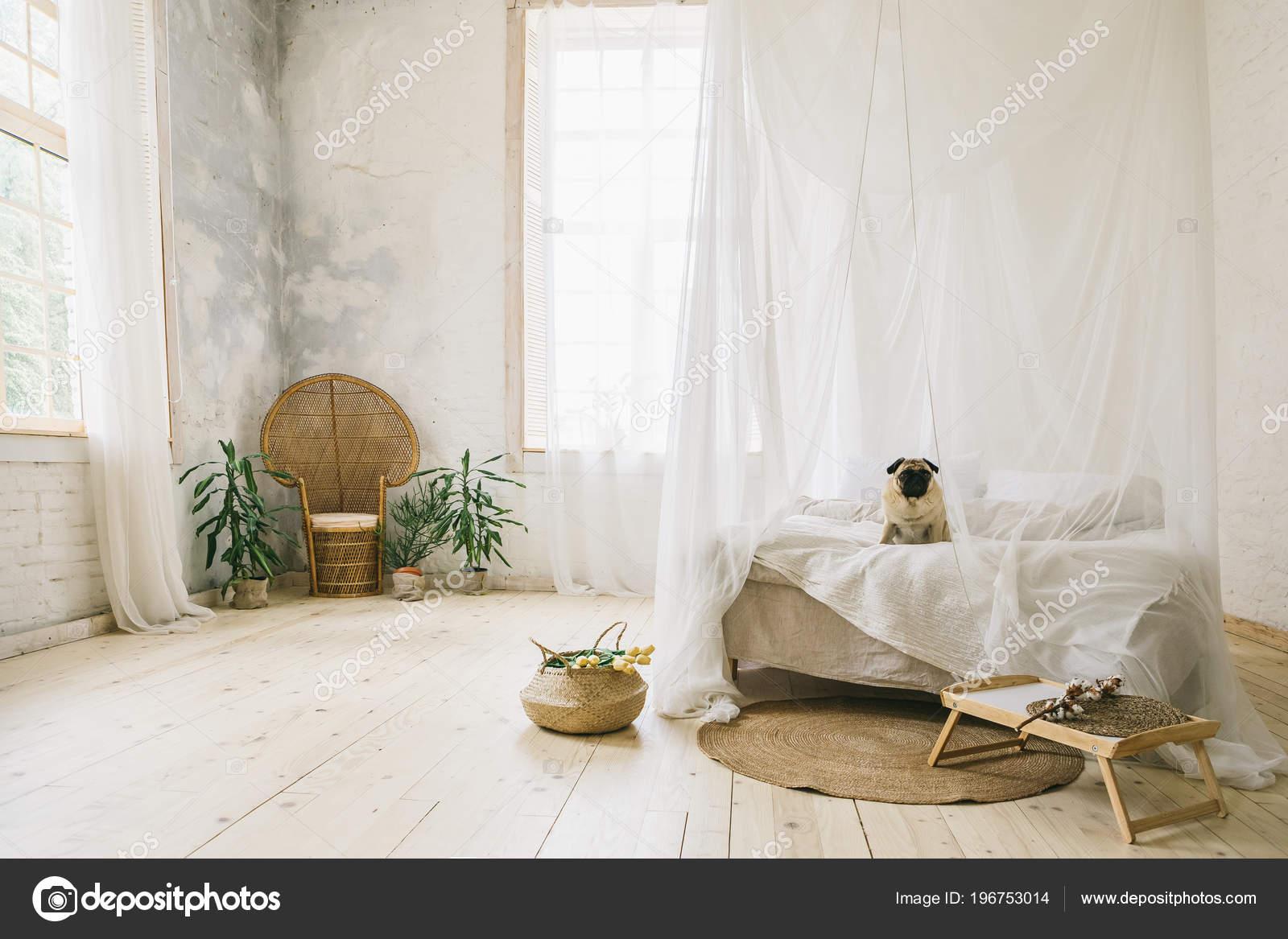 zonnige skandinavische stijl interieur slaapkamer houten vloer natuurlijke materialen hond zittend op het