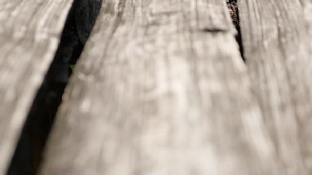 Old rustic wooden garden table boards surface, close-up