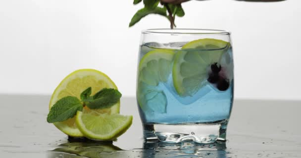 Adding leaves of mint in a glass with cold drink, lime, lemon, currants, ice