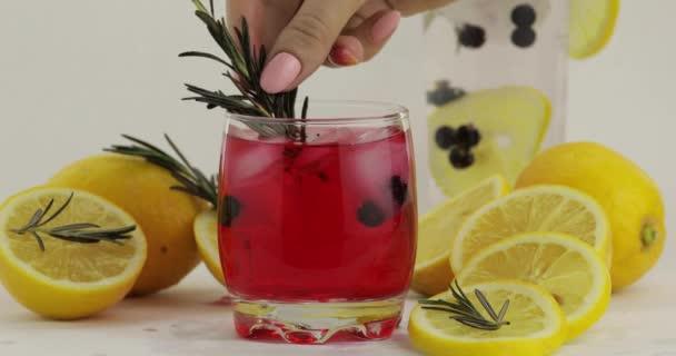 Adding lemon slice, rosemary in a glass with soda lemonade red cocktail