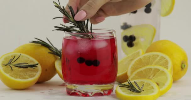 Zitronenscheibe, Rosmarin, Stroh im Glas mit Sodalimonade rotem Cocktail hinzufügen