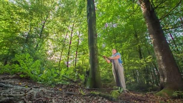 Der ältere und entschlossene Holzfäller mit dem Beil sucht nach dem richtigen Baum, um ihn zu fällen und sein Holz zu einem besonderen modernen Möbelstück zu formen..