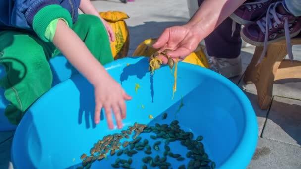 Es ist Halloween-Zeit. Ein kleiner Junge hilft seiner Mutter beim Putzen der Kürbisse und steckt die Kürbiskerne in einen großen blauen Eimer.