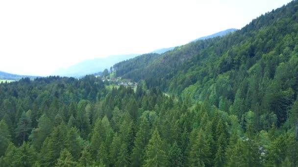 A hegyek tele vannak erdőkkel. A vidék csodálatos..