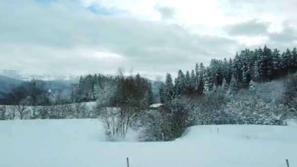 pov záběry krásné zimní krajiny z auta