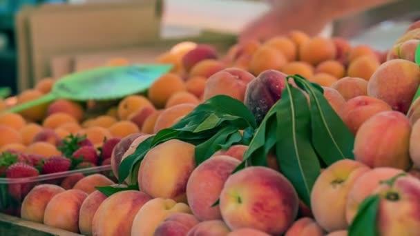 Az őszibarack, a sárgabarack és az eper választéka.