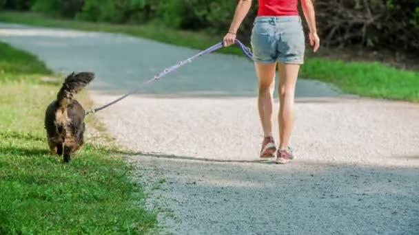 Tato mladá žena se rozhodne jít a venčit svého psa v krásné přírodě. Je horký letní den.