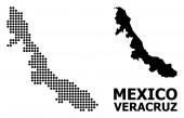 Pixelated minta térképe Veracruz állam