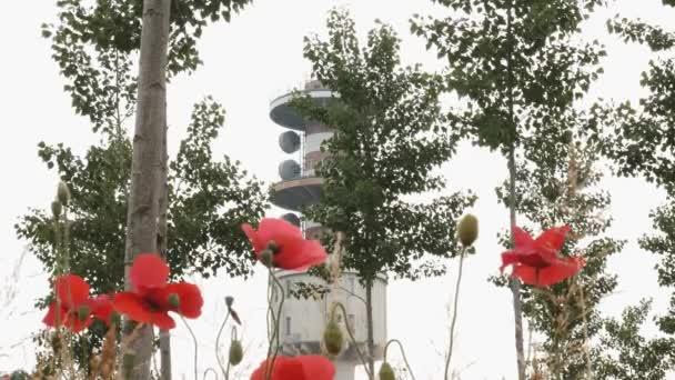 Radio věž vidět koryta mák a topoly