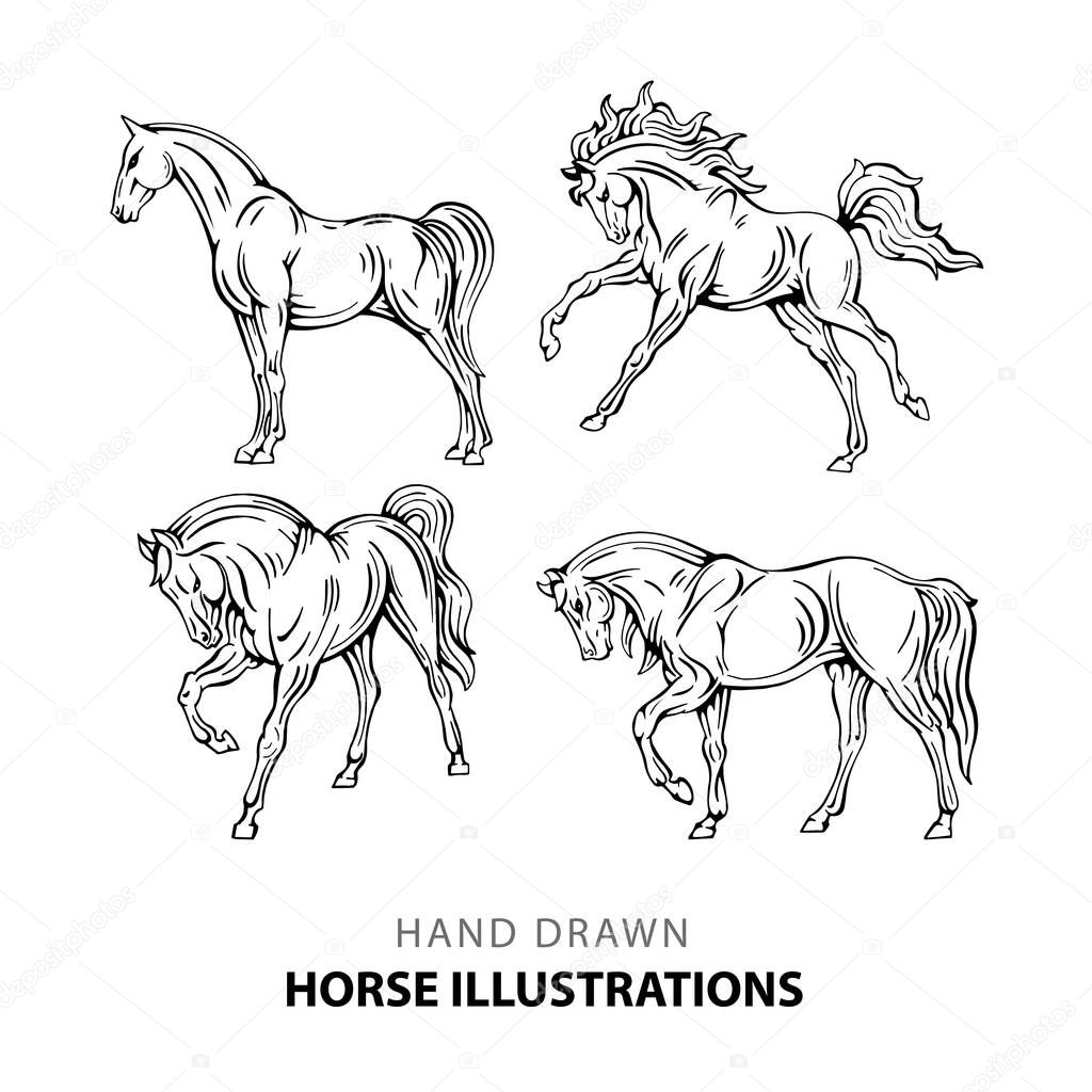 Horse Hand Drawn Horse Illustrations Set Sketch Drawing Horses In Different Poses Premium Vector In Adobe Illustrator Ai Ai Format Encapsulated Postscript Eps Eps Format