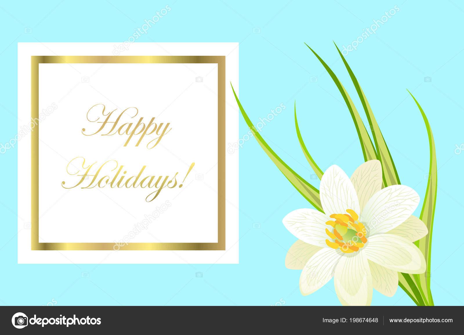 Felices fiestas marco tarjeta con Narciso blanco cerca — Archivo ...