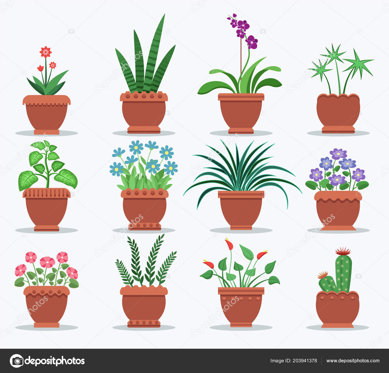Las Plantas De Interior Y Flores Para Interior Vector De Stock