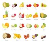 Sugar Apple and Guava Set Vector Illustration