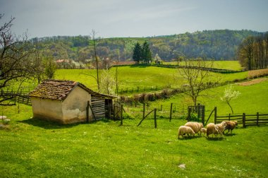 Village landscape in mountain region of Serbia, Europe. Beautiful countryside. Farm surrounded by fields.