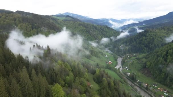 Mlha v horách. Karpatské hory. Ukrajina. Letecký.