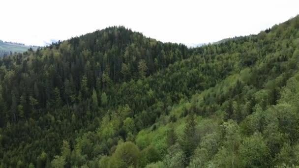 Ukrajina, Karpat: Lesní krajina. Letecký pohled.