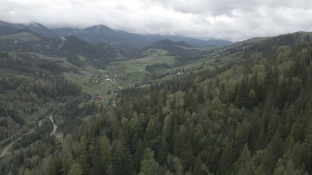 Ukrajina, Karpaty: Krásná horská lesní krajina. Letecký, plochý, šedý