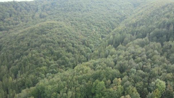 Fák a hegyekben lassított felvétel. A Kárpátok légi kilátása ősszel. Ukrajna