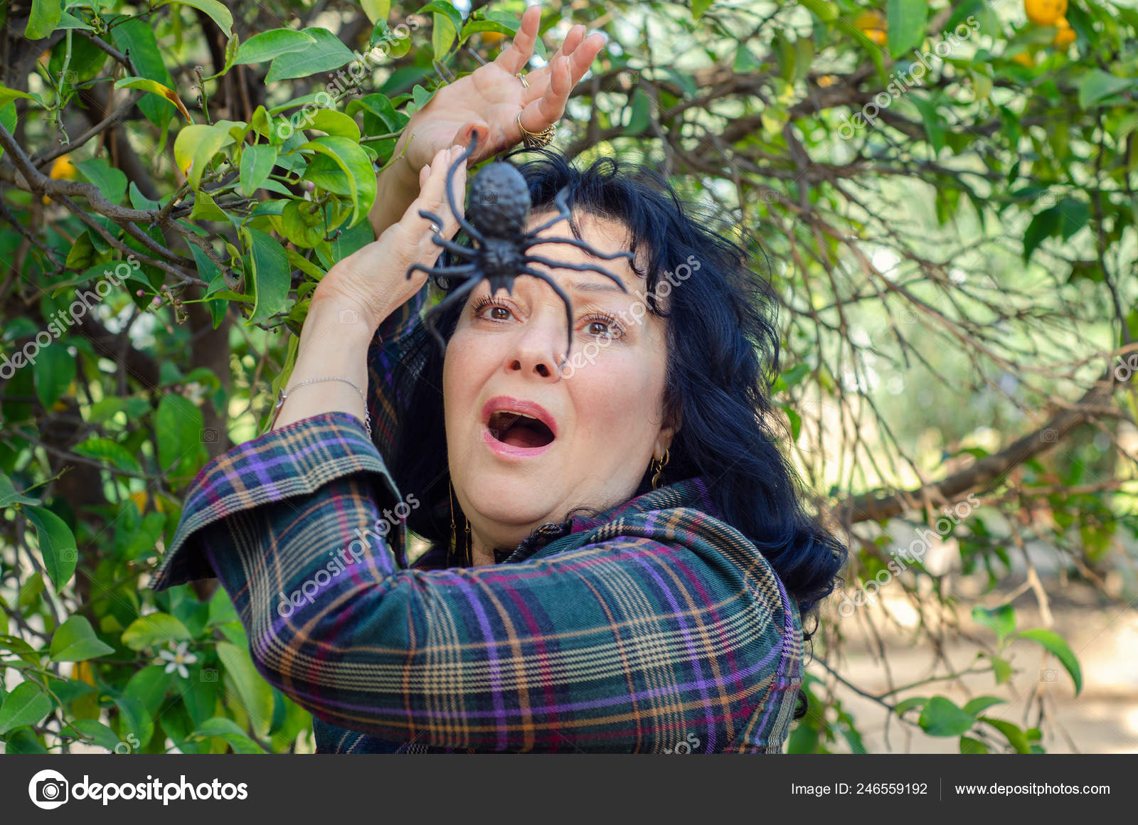 Woman meets a huge spider among green leaves of a tree