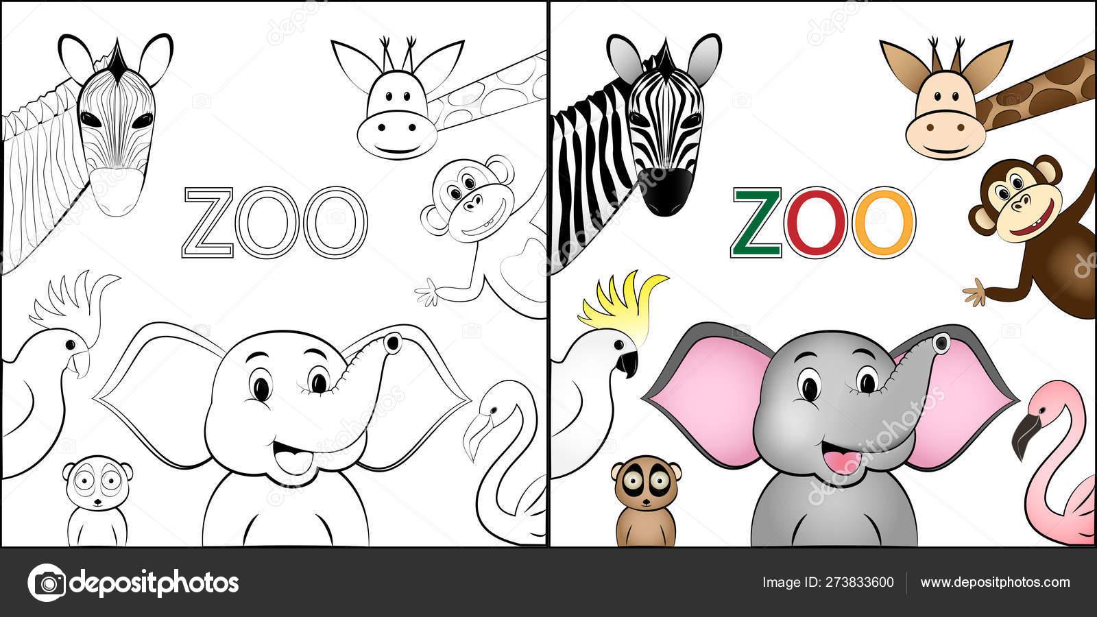 Libro Para Colorear Diferentes Animales Salvajes Salvajes