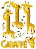 Fotografia scena del fumetto con set di giraffe su priorità bassa bianca con il nome di animale - illustrazione per bambini