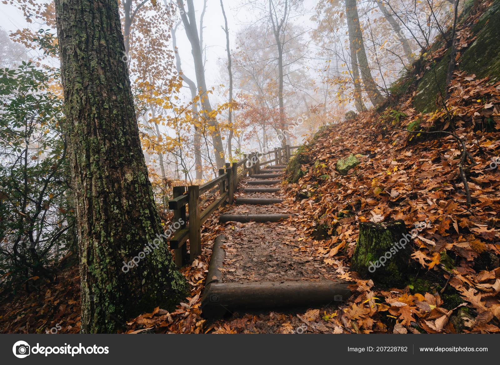 Fog Fall Color Crabtree Falls Trail George Washington National ...