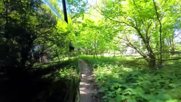 Venkova země silnice, stálezelené stromy, bujnou vegetací, pov pohybu zadní pohled