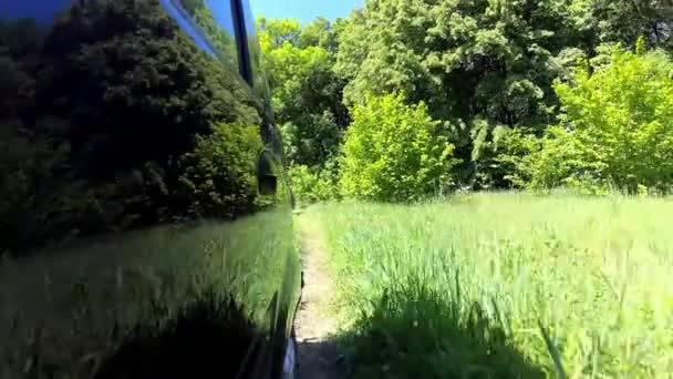 Venkova země silnice, stálezelené stromy, bujnou vegetací, pov pohybu zadní pohled.