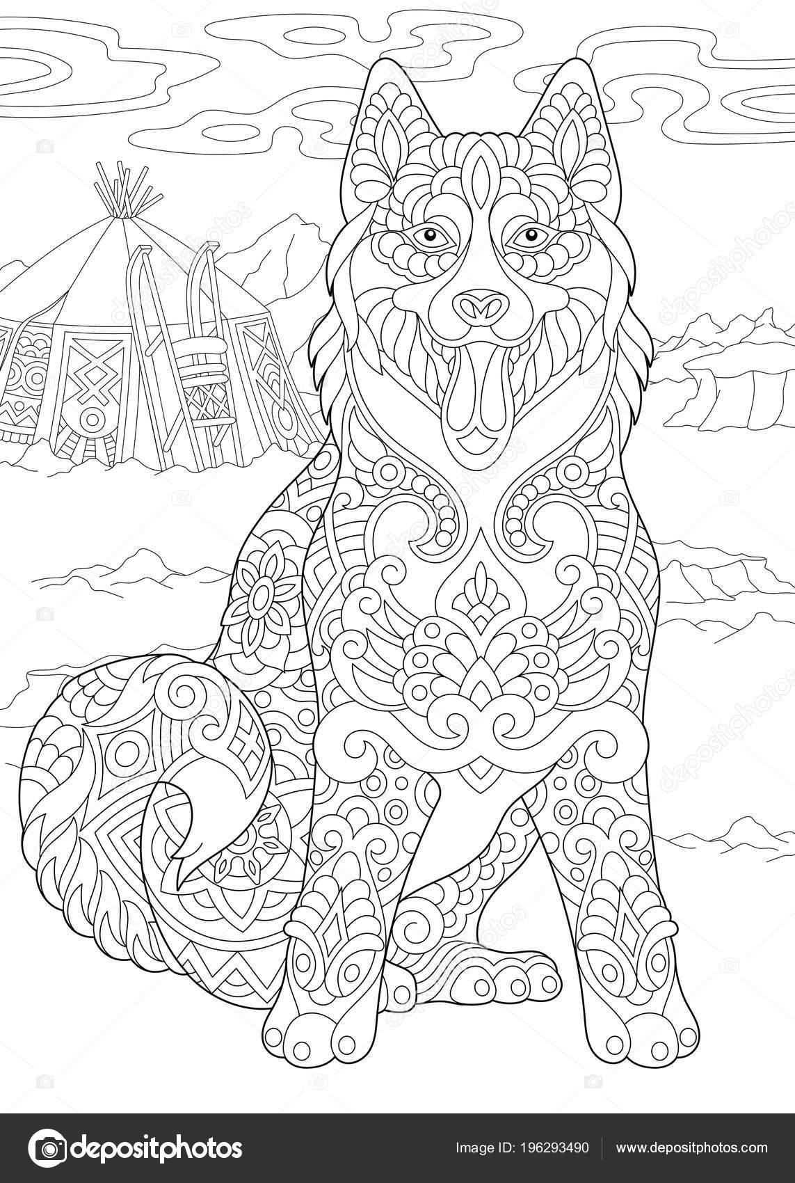 Malamute Alaska Siberian Husky Chien Esquimau Coloriage Idée