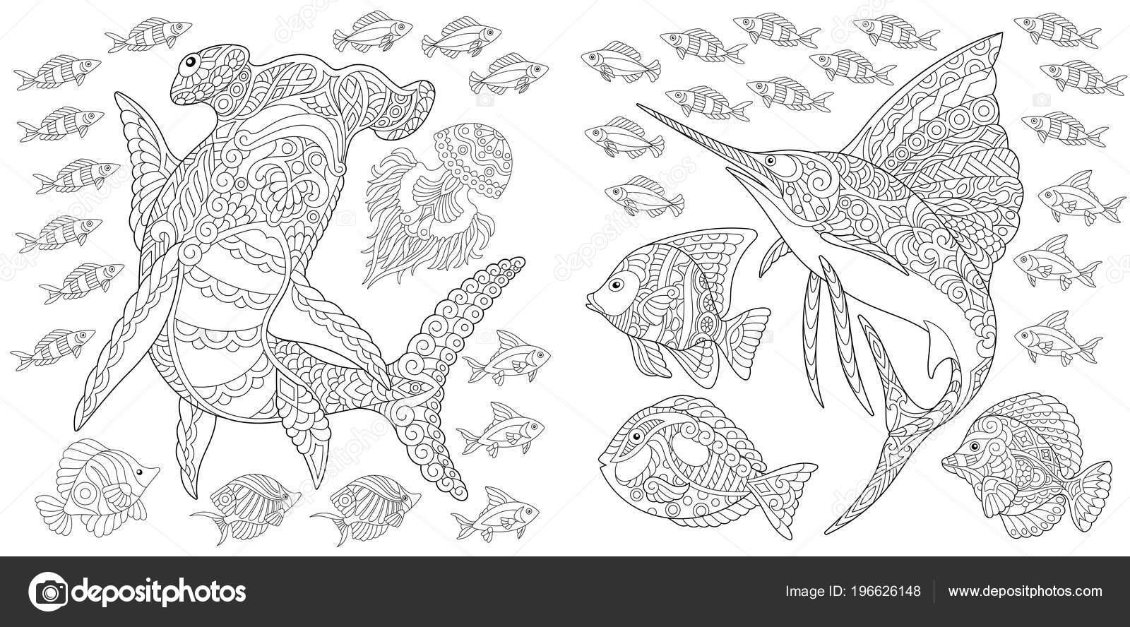 Oceaan Natuur Panorama Hamerhaaien Zeilvis Tropische Vissen Verschillende Soorten Kleurplaat Vectorafbeelding Door C Sybirko Vectorstock 196626148