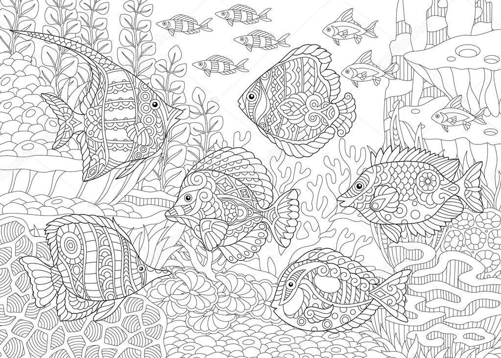 ocean unterwasserwelt schwarm von tropische fische