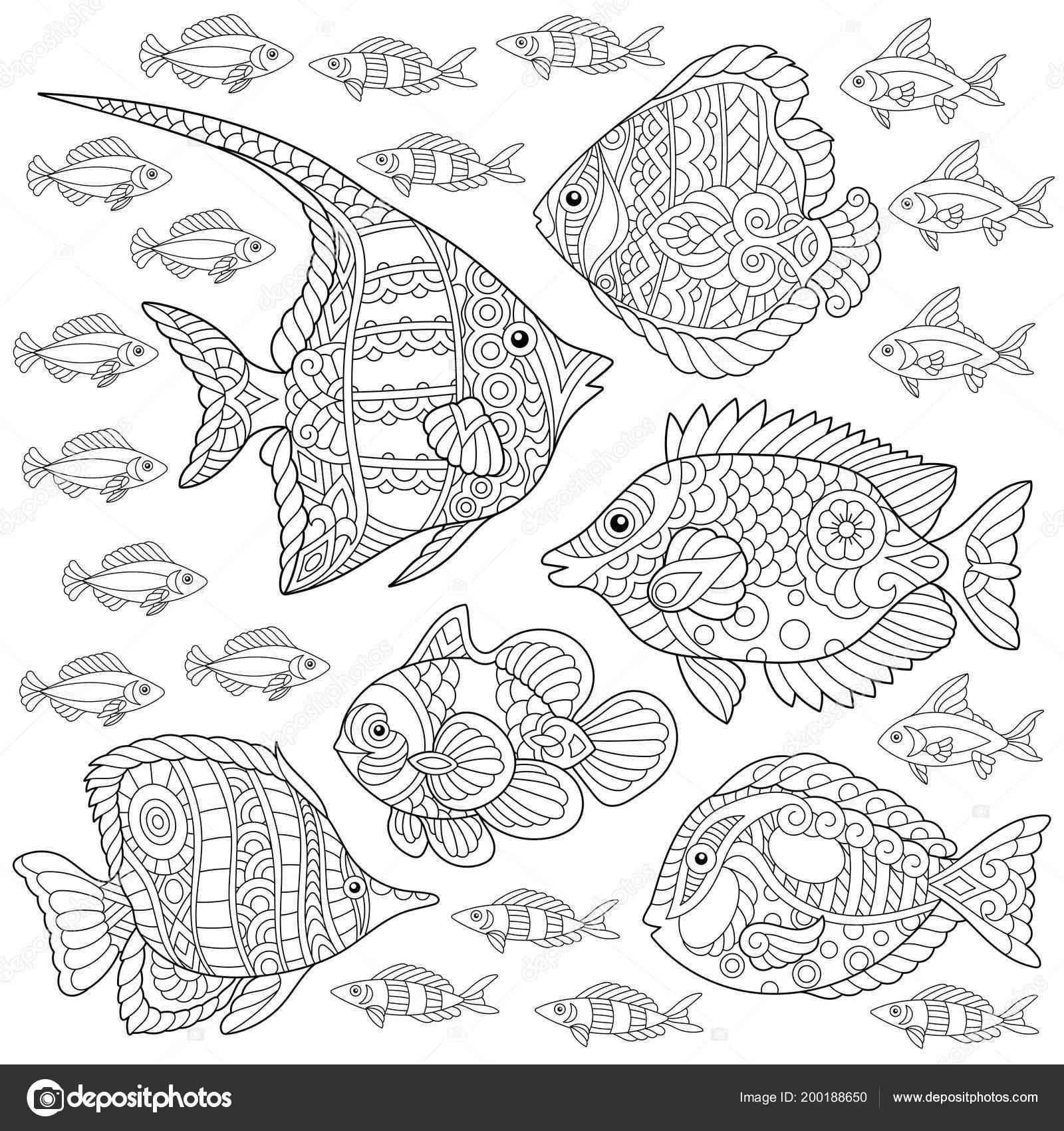 Kleurplaten Dieren In Het Water.Verzameling Van Tropische Vissen Kleurplaat Kleuren Foto Volwassen