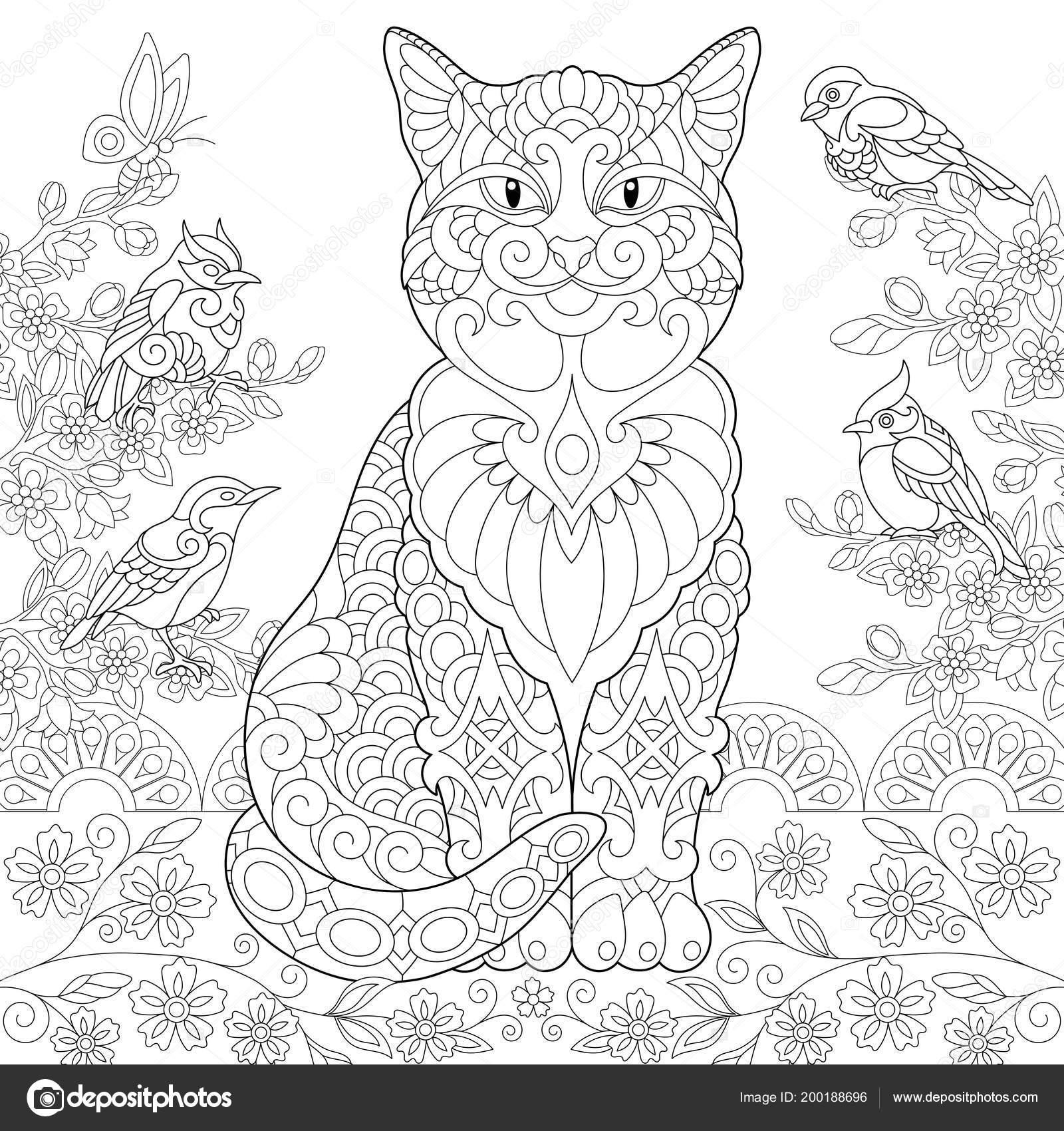 Katze Und Frühjahr Vögel Garten Malvorlagen Ausmalbild Erwachsenen