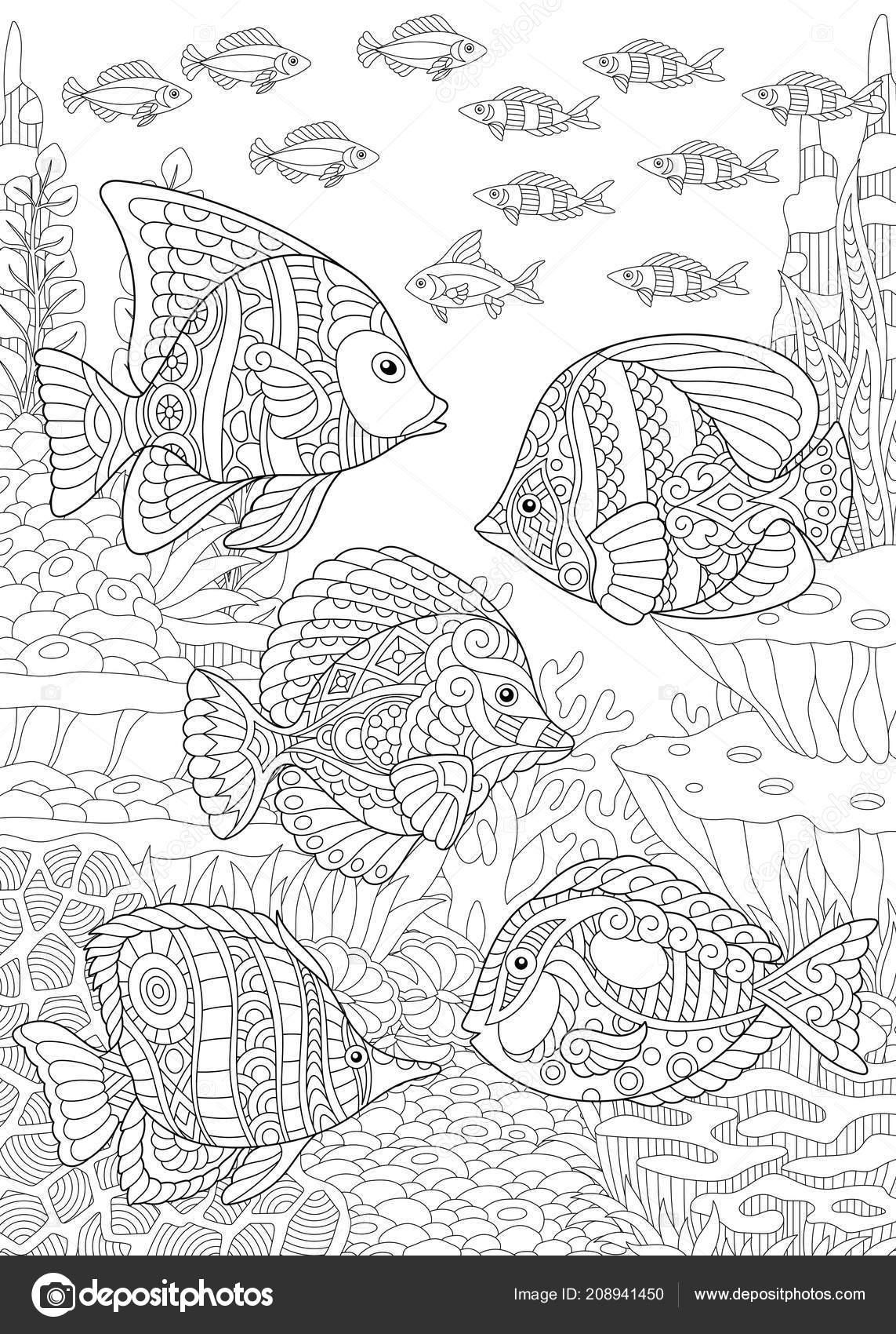 Kleurplaat Kleurboek Kleuren Foto Met Tropische Vissen Stressprogramma Freehand Schets Vectorafbeelding Door C Sybirko Vectorstock 208941450