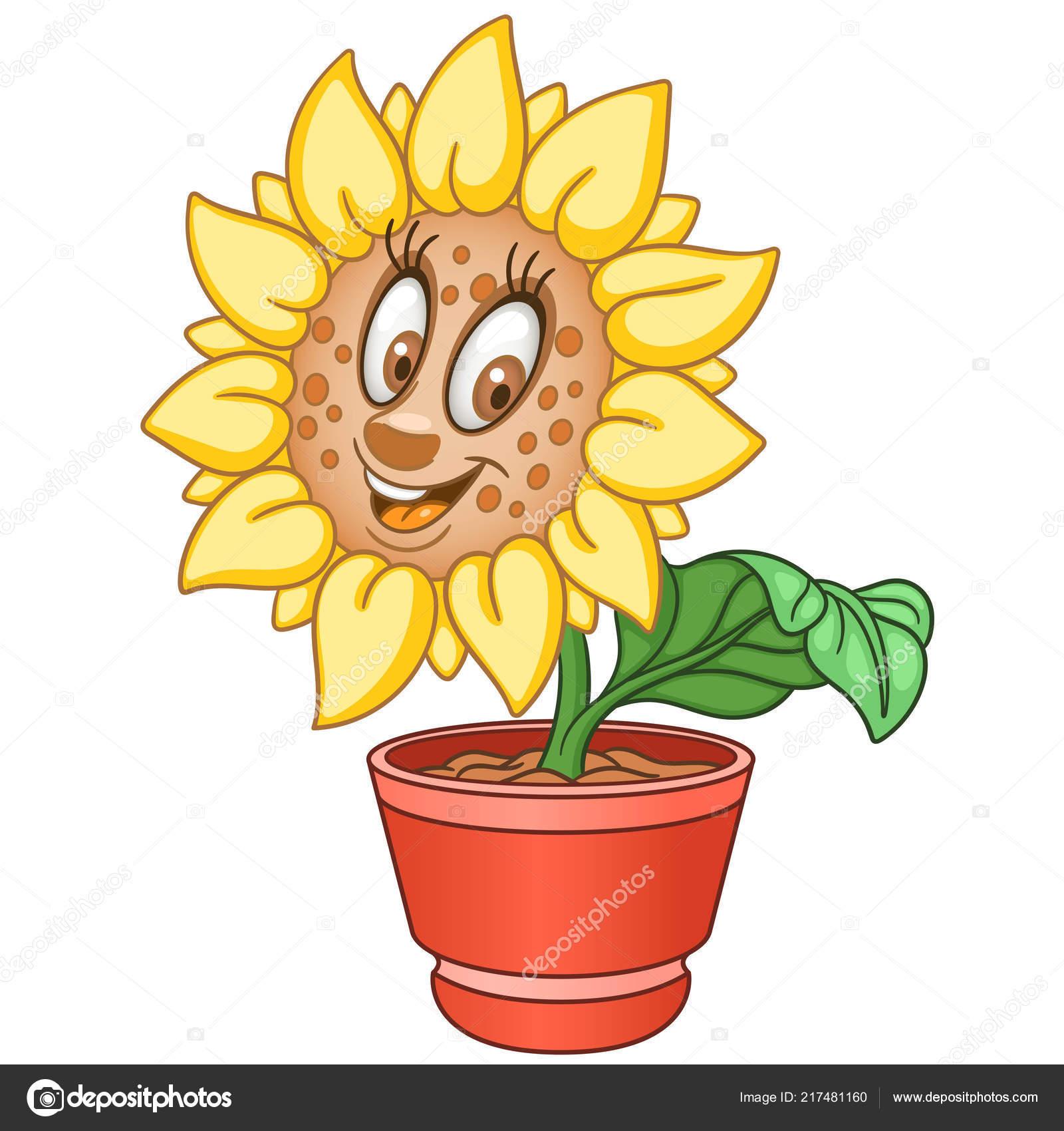 Ayçiçeği Sarı çiftlik Ayçiçeği Bitkisi Bir Tencerede Mutlu çizgi