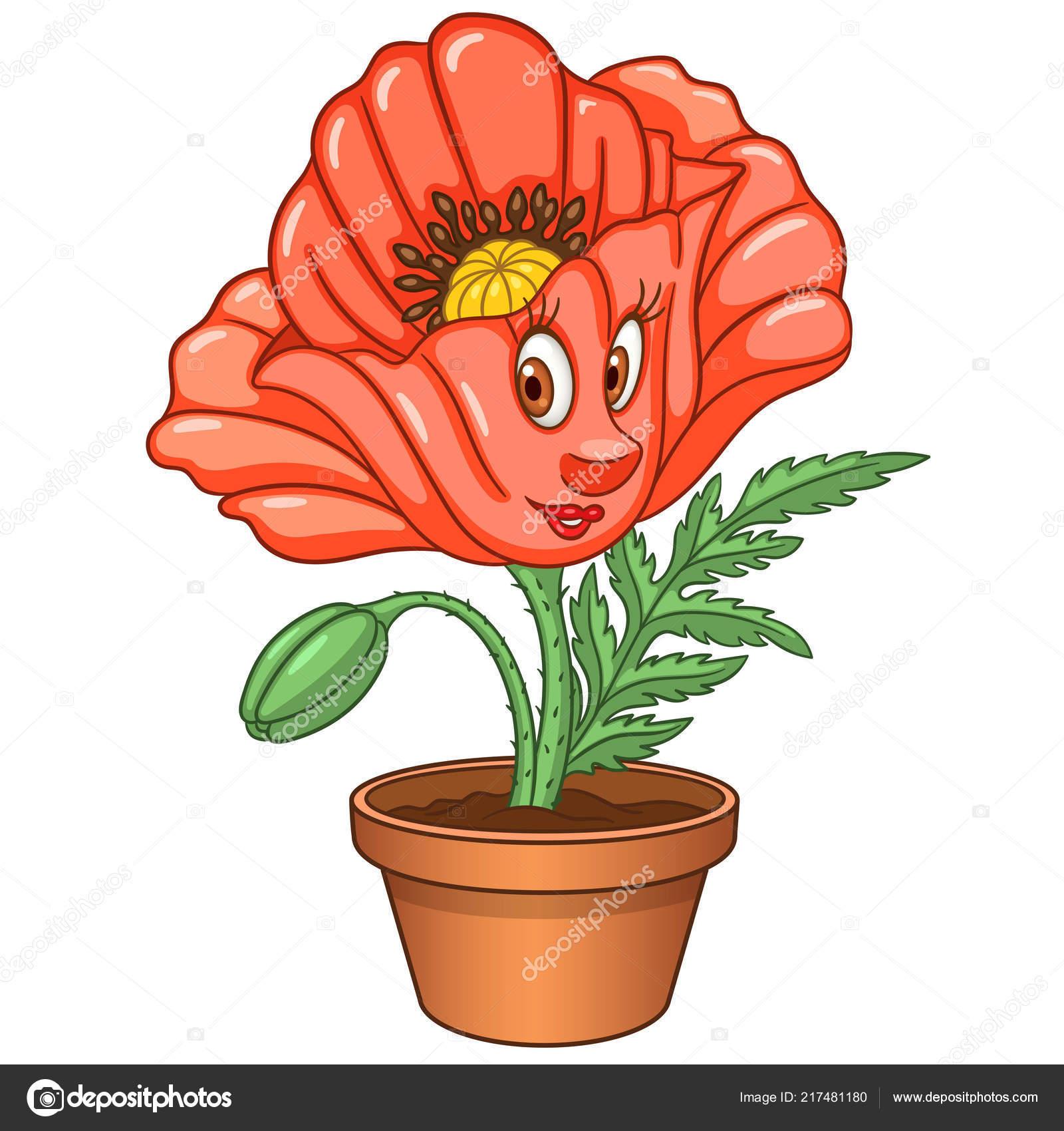 Fleur Coquelicot Rouge Plante Interieur Dans Pot Dessin Anime Joyeux