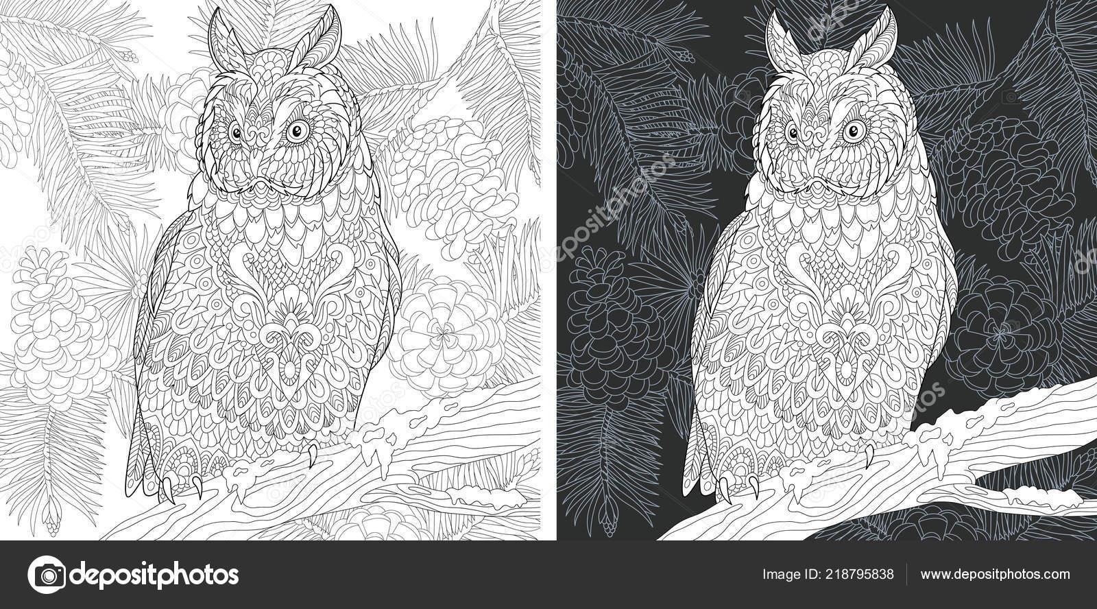 Malvorlagen Malbuch Ausmalbild Mit Eule Zentangle Stil Gezeichnet