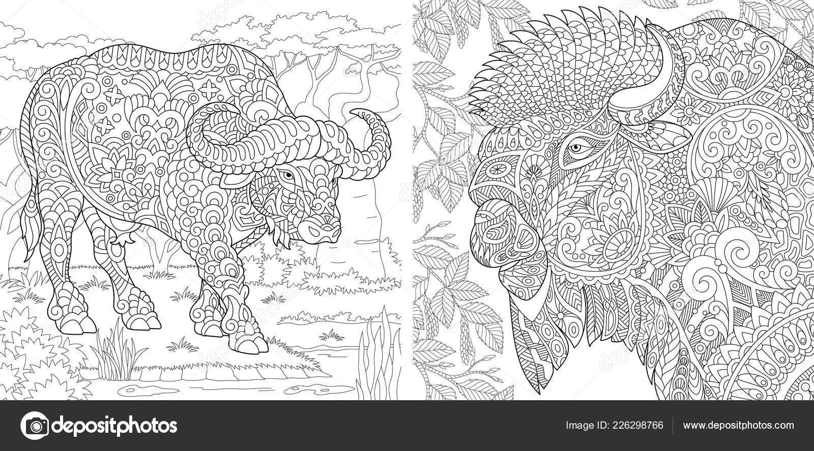 Images Buffalo For Colouring Coloring Pages Coloring Book