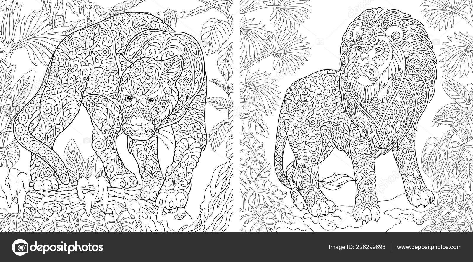 Malvorlagen Malbuch Für Erwachsene Ausmalbilder Mit Panther
