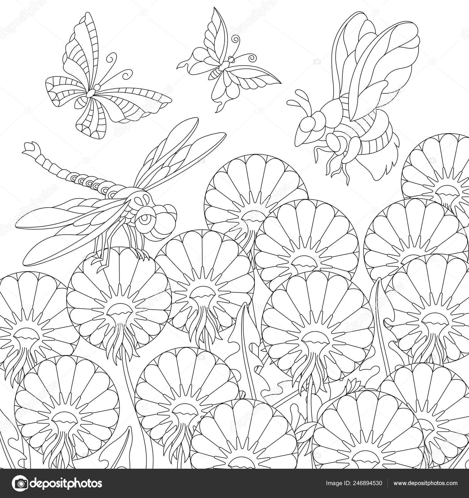 Zentangle Coloring Page Colouring Picture Butterfly Dragonfly Honey Bee Dandelion Vector Image By C Sybirko Vector Stock 246894530