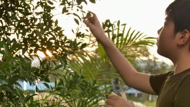 thai teen video