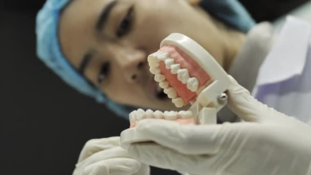 Dentist showing to the camera how to use a tool. Dentist showing jaw model, giving lesson on proper teeth and oral cavity care.