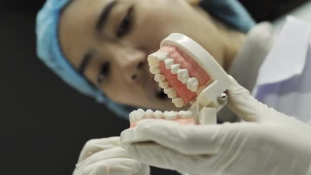 Zubař ukazuje kamery, jak používat nářadí. Zubař zobrazující model čelisti, lekce správného zubů a péče o ústní dutinu.