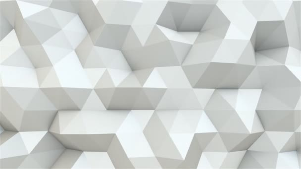 Fehér sokszögek Motion