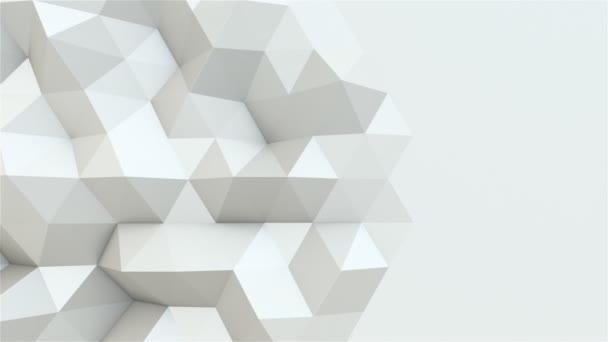 Pohyb bílých polygonů