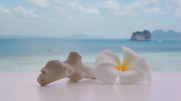 Plumeria frangipani flower with coral stone on tropical island in Thailand, Andaman sea, boats passing in background.