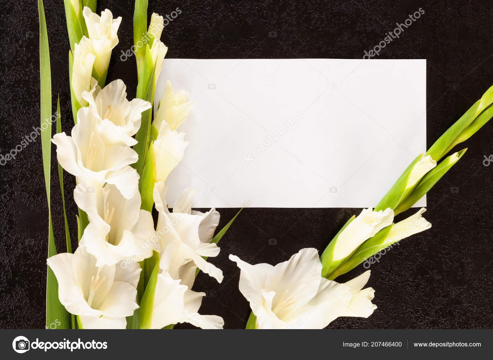 Gladioli Flowers White Card Obituary Death Notice Concept Stock