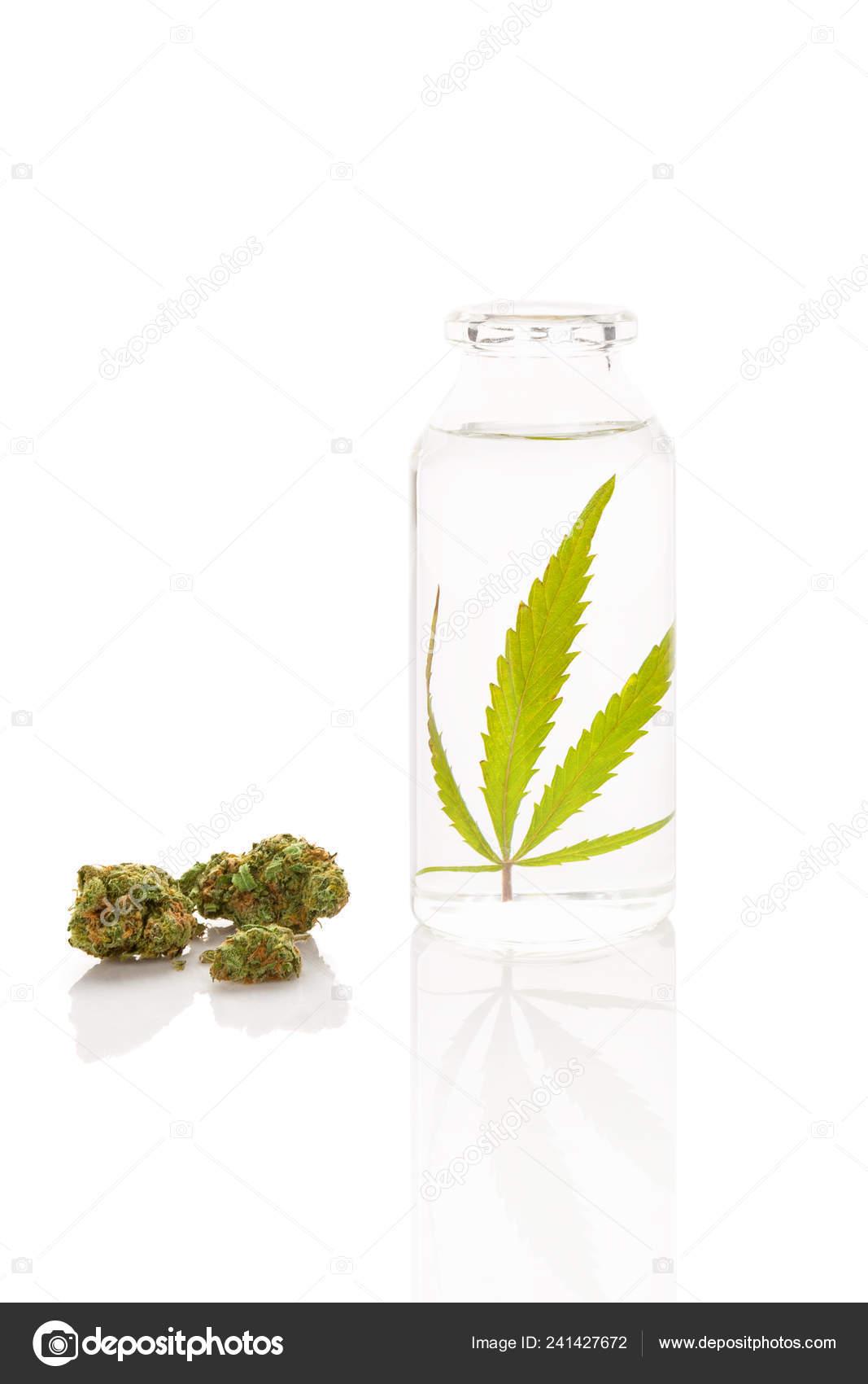 Cbd Oil Cannabis Bottle Ethanol Marijuana Buds Extraction