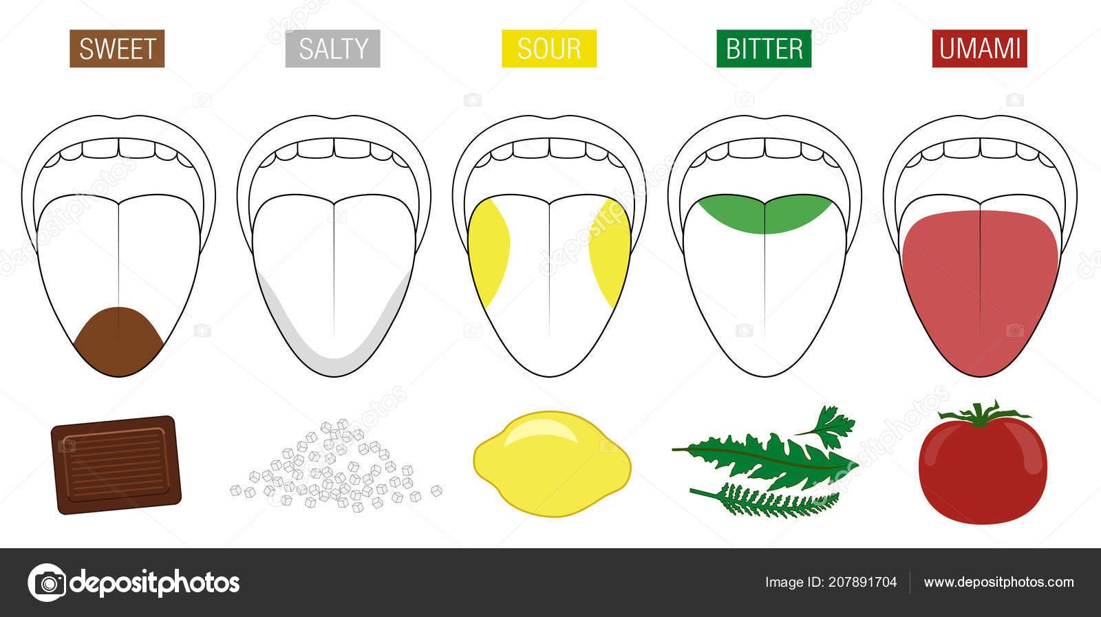 Salz Zunge